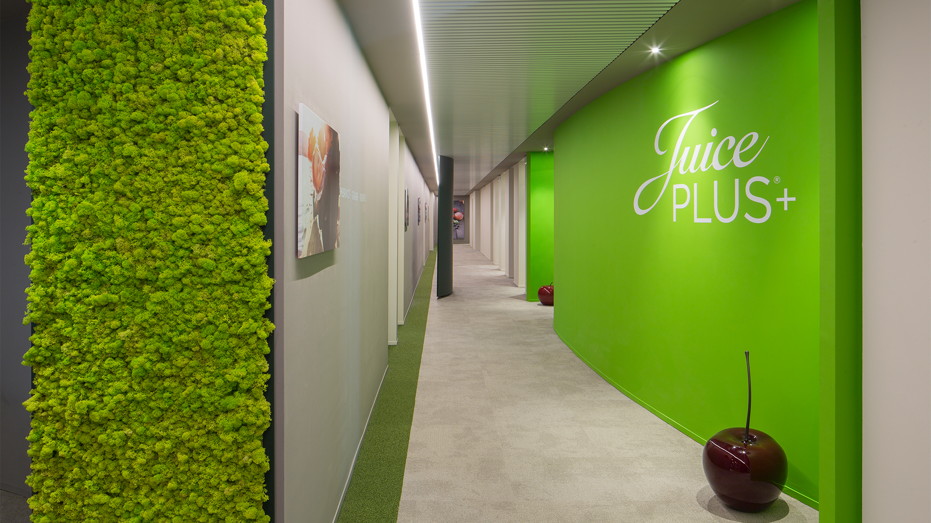 juice-plus-level-office-landscape