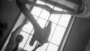 Ambiente spaziale a luce nera Lucio Fontana archivio