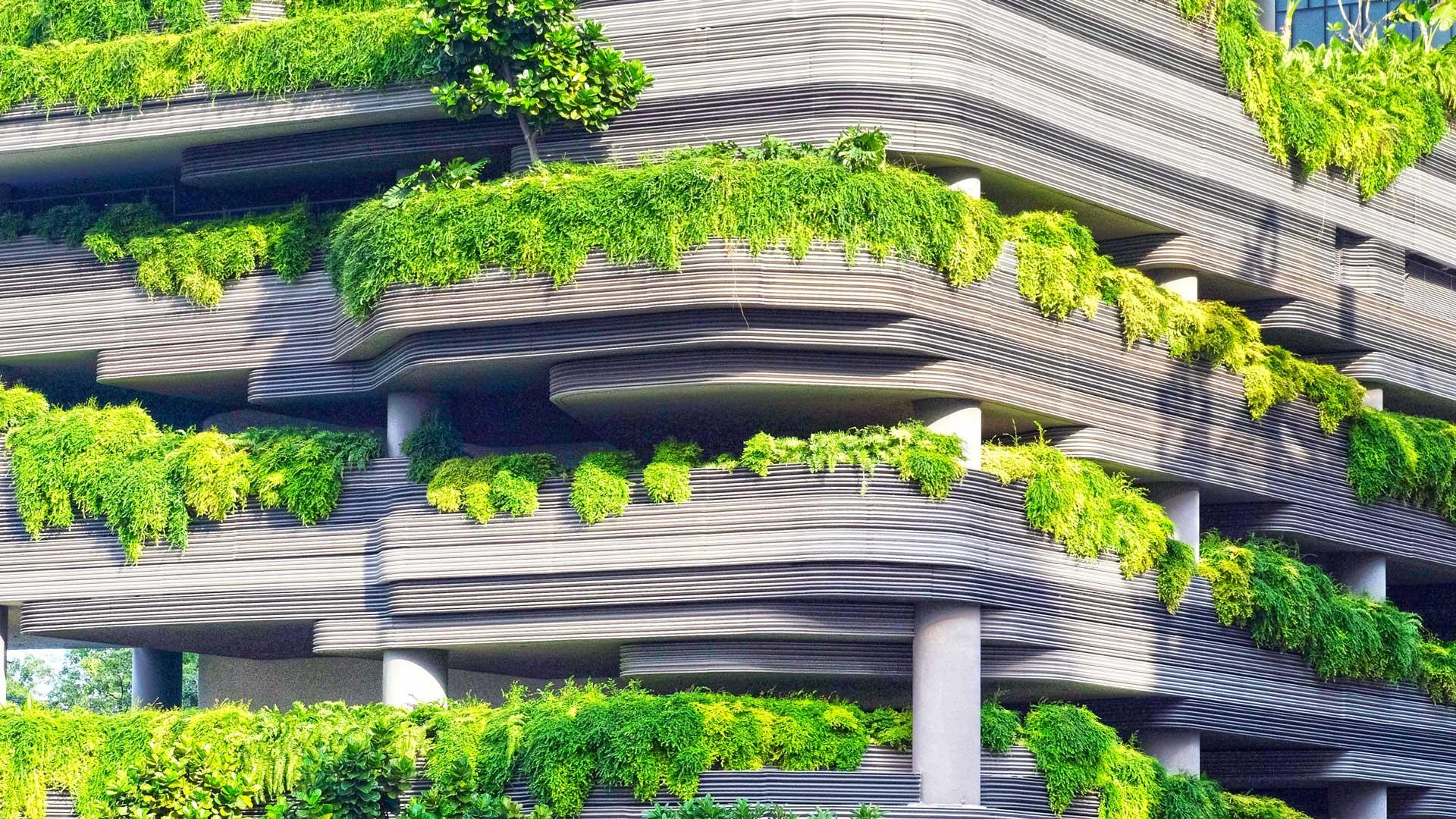 Natura-in-ufficio-biophilic-design-Level-Office-Landscape