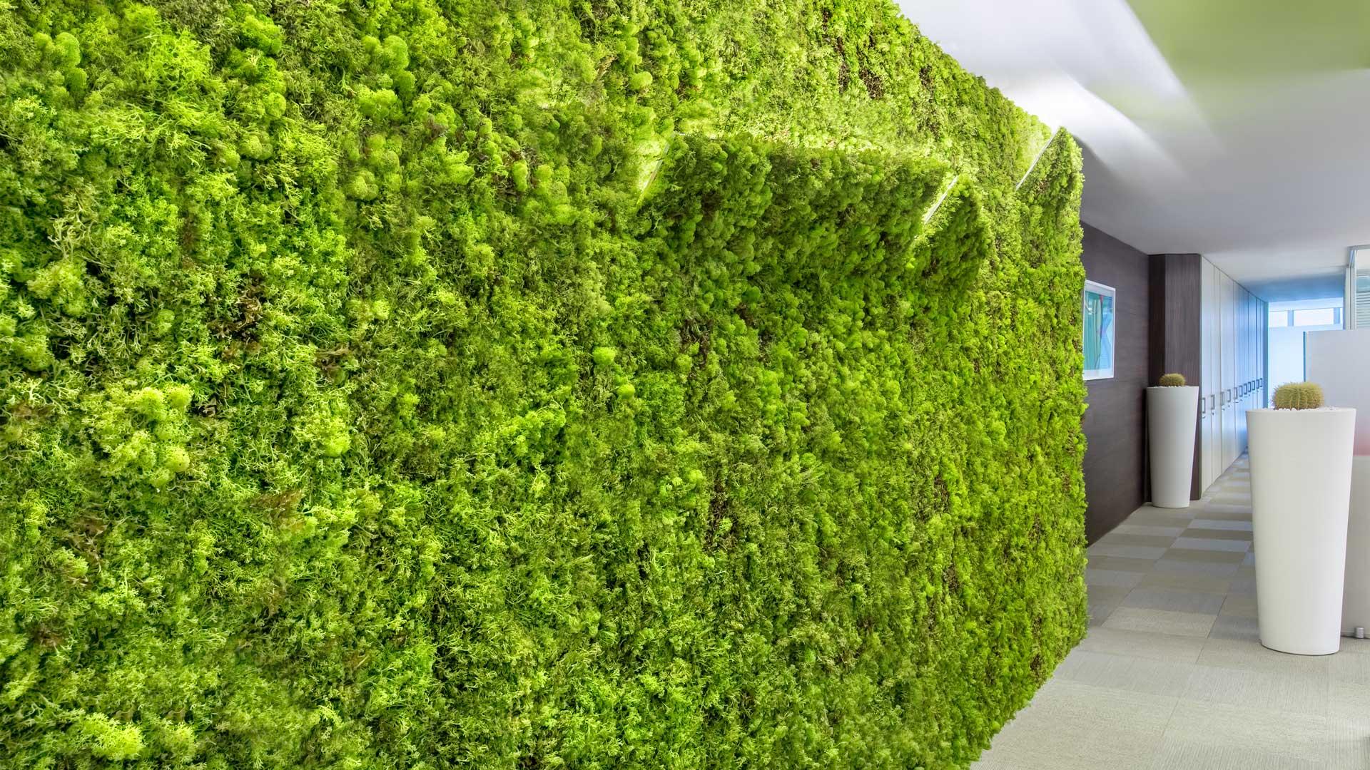 Ingresso-moss-wall-parete-verde-Level-Office-Landscape