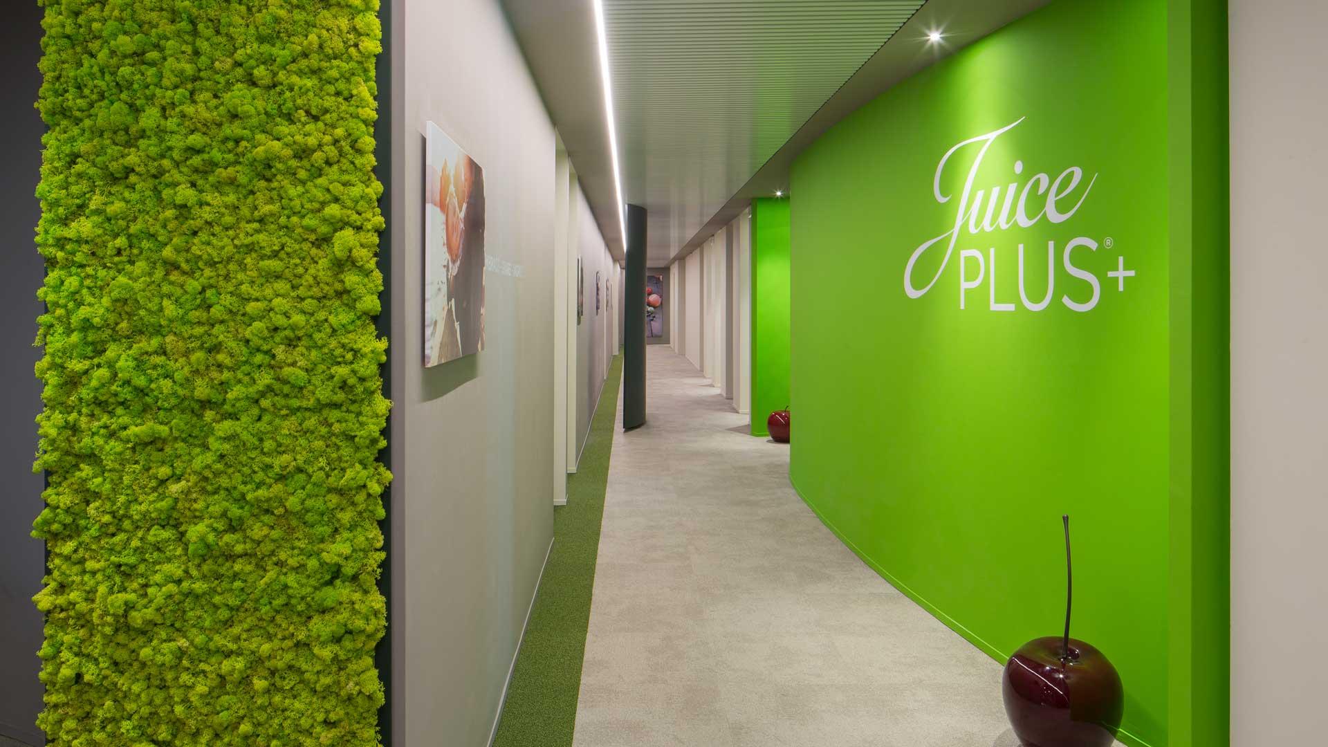 Uffici-per-e-commerce-Juice-Plus-3-Level-Office-Landscape